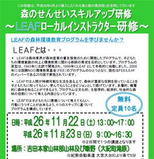 miepre-leaf.jpg